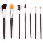10 piece Professional Set $65.00